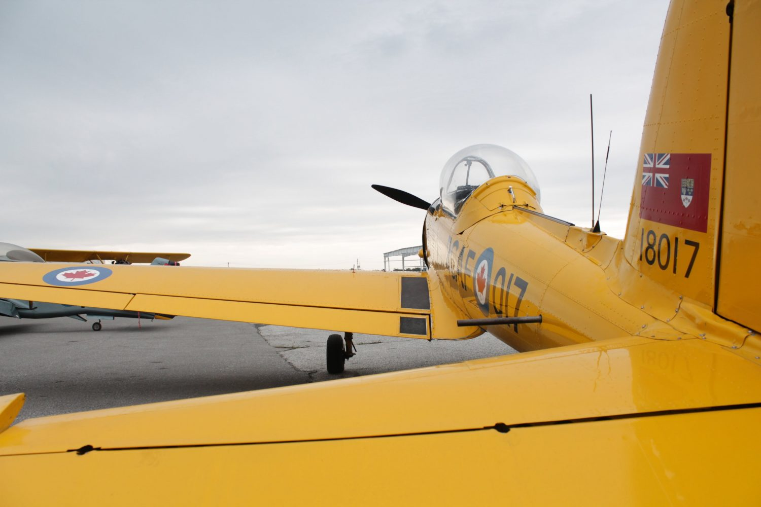 Yellow Aircraft Canadian Women in Aviation